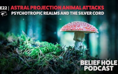 Astral Projection Animal Attacks, Psychotropic Realms and the Silver Cord