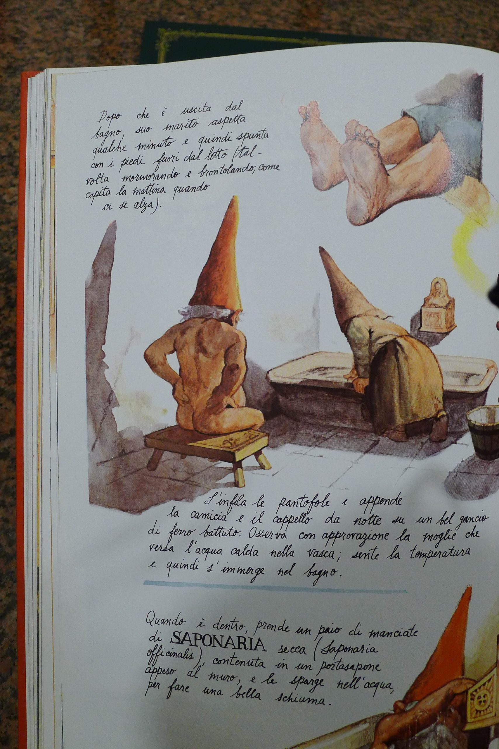 Gnomes Book - Wil Huygen
