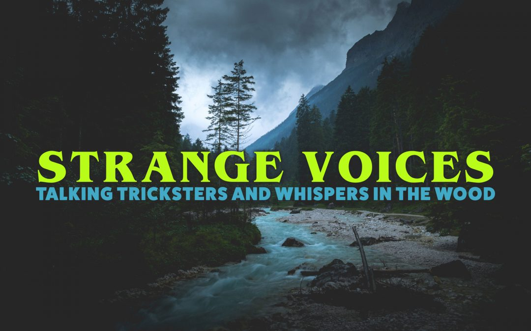 3.02 | Strange Voices, Talking Tricksters and Whispers in the Wood