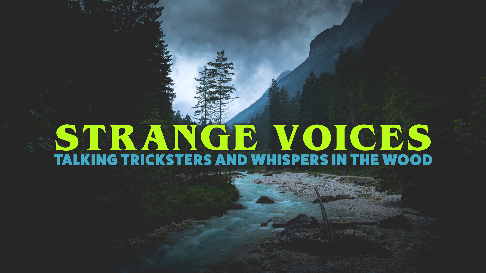 STRANGE-VOICES-Disembodied-Voices-Missing-411-Podcast